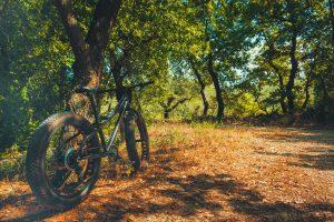 Biciklističke staze u Istri