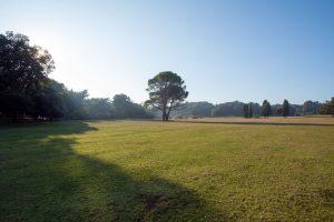 Golf igralište Brijuni