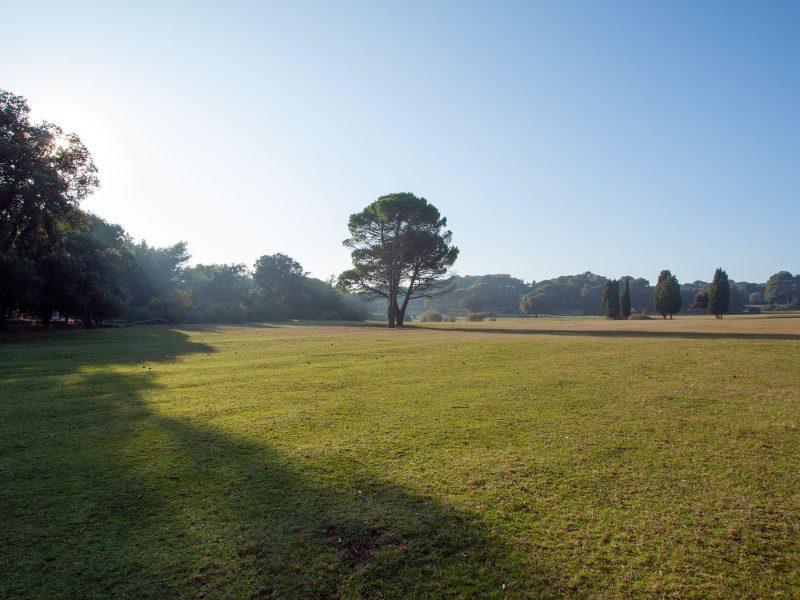 Golf u Nacionalnom parku Brijuni