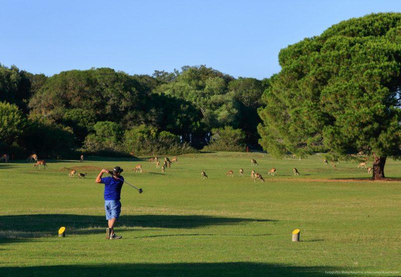 Golf teren NP Brijuni